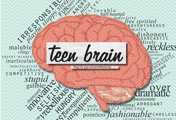 teenage brain The human brain continues to grow during the teen years, well into the twenties it's a scientific fact that abusing drugs and alcohol while your brain is still developing can change the brain's structure and how it works—both in the short and long term yale university scientists recently .